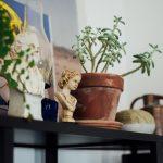 CASSETE #2 – CHEGASTE. PREPARAS UM CAFÉ E VAIS REGAR AS PLANTAS